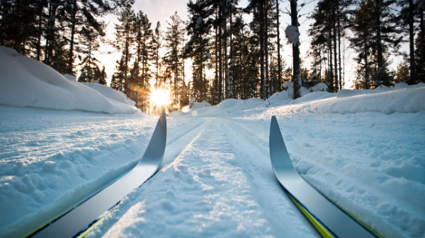 Langlauf-Ski im Schnee