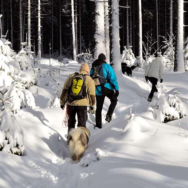 Winderwanderer in herrlich verschneiter Landschaft am Ochsenkopf
