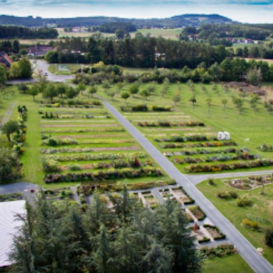 Blick über den weitläufigen Nutzpflanzengarten im Süden des ÖBG-Geländes