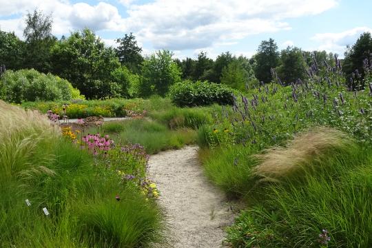 Weg in die Prärie im Ökologisch Botanischen Garten in Bayreuth