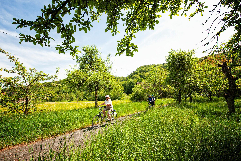 Radfahren in Wiesenttal